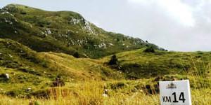 8° Skyrace® Monte Cavallo