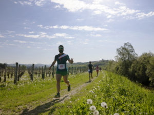 Ecomaratona del Collio-Brda 2019 e Camminata nel Collio